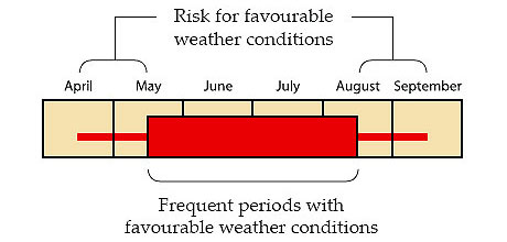 Risk for favourable weather conditions vs. Frequent periods with favourable weather conditions