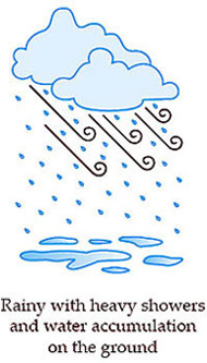 Rainy with heavy showers and water accumulation on the ground